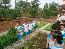 Bé thu hoạch củ cải